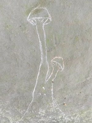 One of the images left by vandals at the Sanilac Petroglyphs Historic State Park.