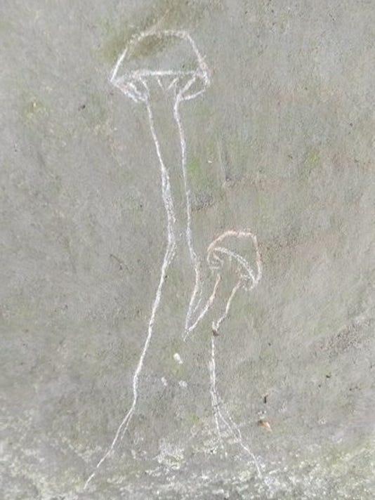 636404622581041802-Petroglyph-vandals.jpg