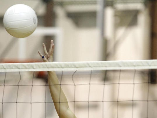 webart sports volleyball 4
