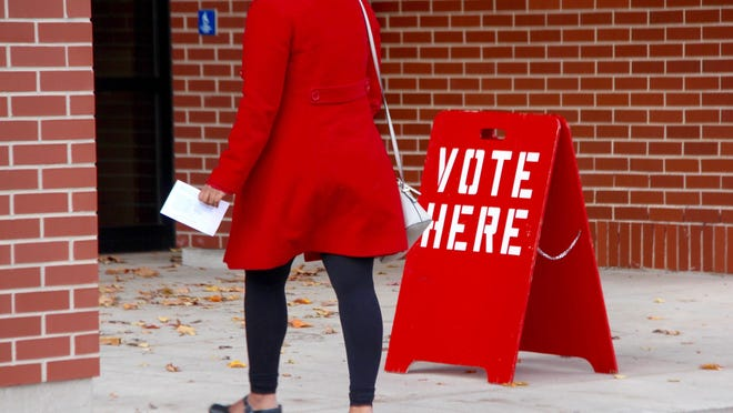 Polls are open from 7 a.m. to 8 p.m. Tuesday, Aug. 4, for a variety of local contested primary races and millage proposals.