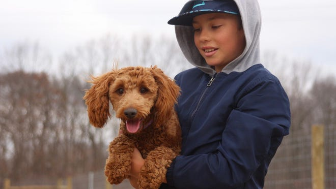 Eddy Tjepkema and his dog Zuri, a minature goldendoodle, take a break from playing Friday, Dec. 4, at Van Raalte Park's recently opened dog park.