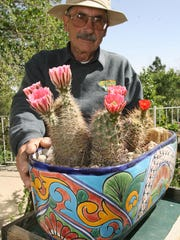 Peter Beste is a longtime gardener of cactus and native