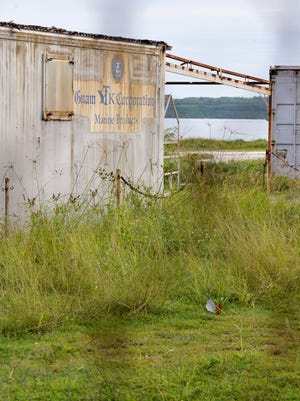 In this file photo, the Guam YTK Corporation Marine Products building sits behind a locked gate at the Hotel Wharf on Cabras Island.