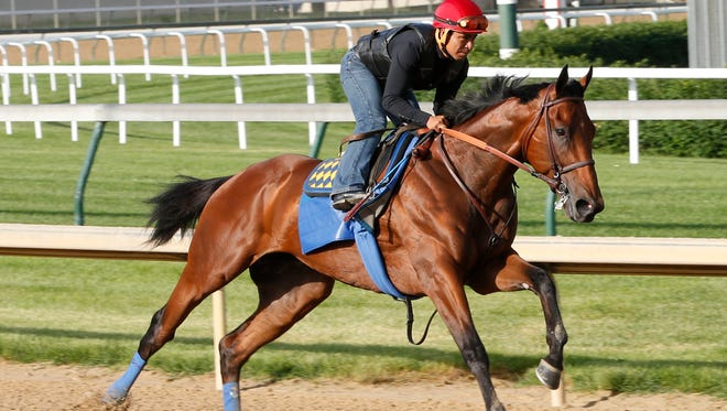 American Pharoah breezes Tuesday for the Belmont Stakes.
