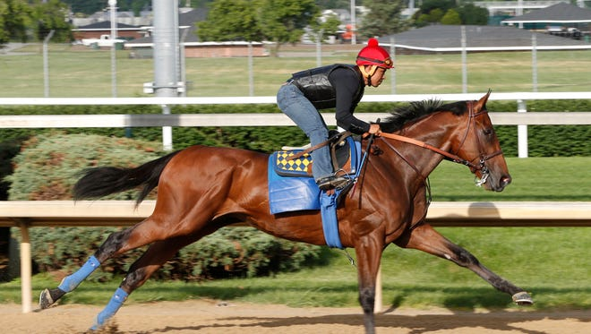 American Pharoah works out Tuesday morning at Churchill Downs.