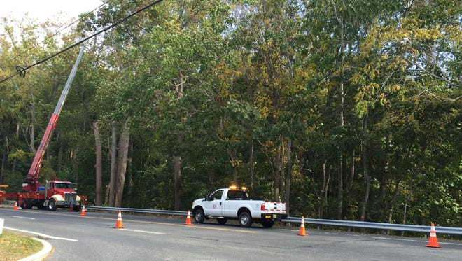 NJDOT crews mark and cut down trees along Route 34 Tuesday, Oct. 20, weeks after a rotted tree killed a motorist.