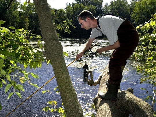 A sportsman fishes from a tree above the Grand River for Coho Salmon near downtown Portland with friends and family.