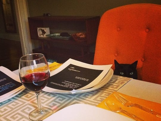 A sneaky kitty cat tries to join in a previous Passover