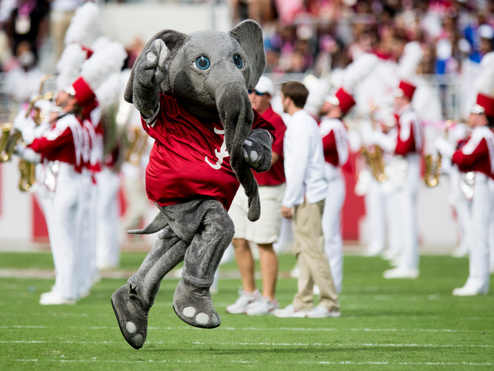 Alabama mascot Big Al before the Tennessee game at Bryant-Denny Stadium in Tuscaloosa,