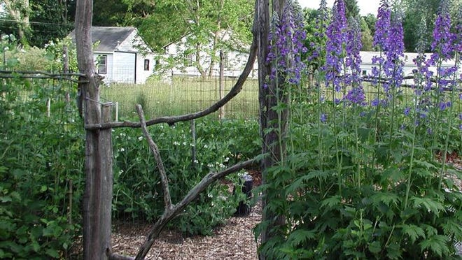 A rustic gate made from locust wood, a rot-resistant wood, will protect and decorate a garden entrance the for many years.