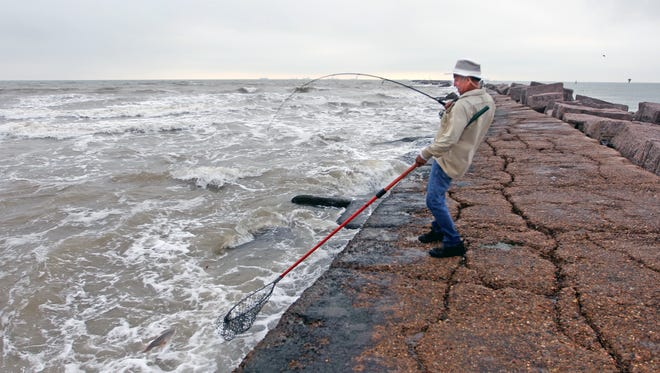 Abel Leal of Rockport scoops a keeper redfish from the surf along the north jetty near Port Aransas.