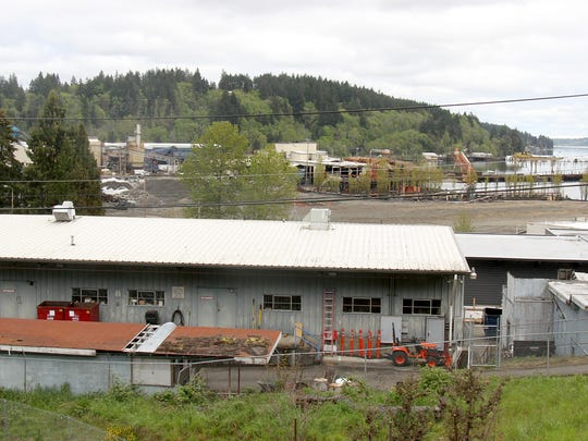 Black Diamond acquired the old Rayonier building in a run down section of an industrial area in Shelton and invested millions to convert it into a state of the art marijuana grow house.  The building is located behind the Shelton School District building in the foreground.