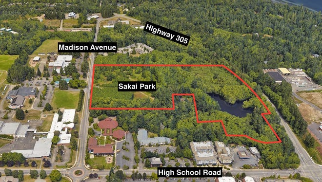 This aerial shot shows the approximate boundaries of Sakai Park.