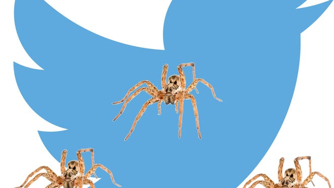 A probably accurate e-portrayal of Chris Tarantino's experience of live-tweeting the spider infestation he found in his rental car.