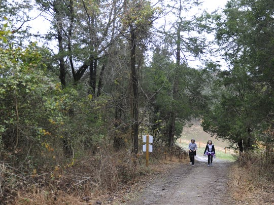 Citizens for Brentwood Green Space is having its fifth annual freeWalk in the Park familyevent 2-6 p.m. Sunday atMarcella Vivrette Smith Park on Wilson Pike.