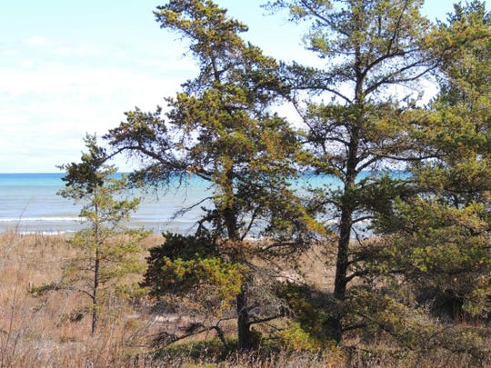 Consider the gift of a Wisconsin state park sticker for your loved ones and family members. This allows free admission to all of our amazing state parks and state forests, like Point Beach State Forest in Manitowoc County, for 2017.