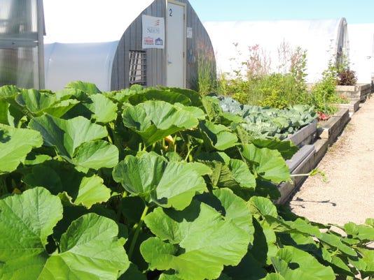 APC FVTC agriculture tech LEAD.JPG