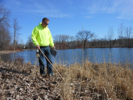 Parks and Rec worker Ron Cortese looks for goose eggs around Little Lake. The department went out to oil the eggs on a permit from the DNR to help curb the geese population at the lake.