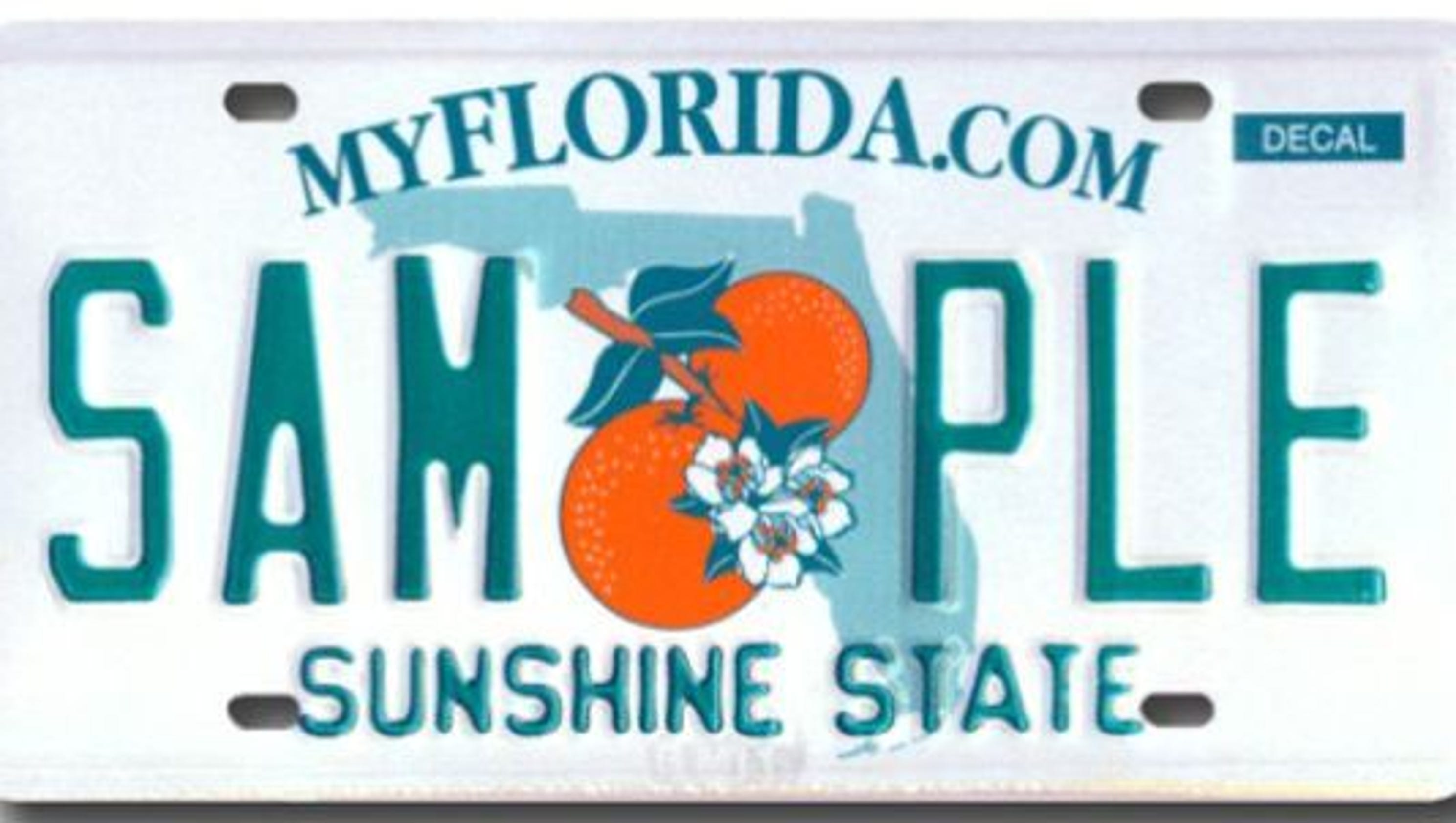 Florida license plates covering any part of license plate for Alberta motor vehicle registration