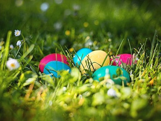 Enjoy a good old-fashioned Easter Egg hunt in Pitman.