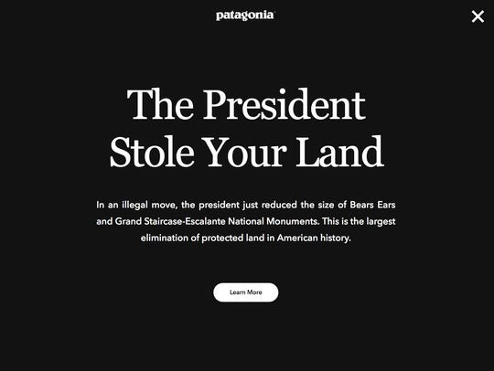 Patagonia, an American outdoor clothing and gear company,