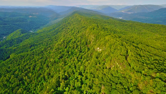 Line Fork Preserve, northern  face of Pine Mountain, eastern Kentucky.