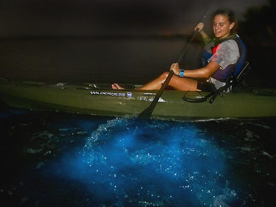 Titusville's Day Away Kayak Tours features a nighttime paddling trip where living lights dance in the water. Mullet jump and manatees and dolphins keep you company. With each water movement, bioluminescence sparkles with emerald green flashes caused by tiny organisms that glow when stirred up.