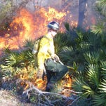 In this file photo a firefighter with the National Park Service conducts a controlled burn at Gulf Islands National Seashore near Gulf Breeze.