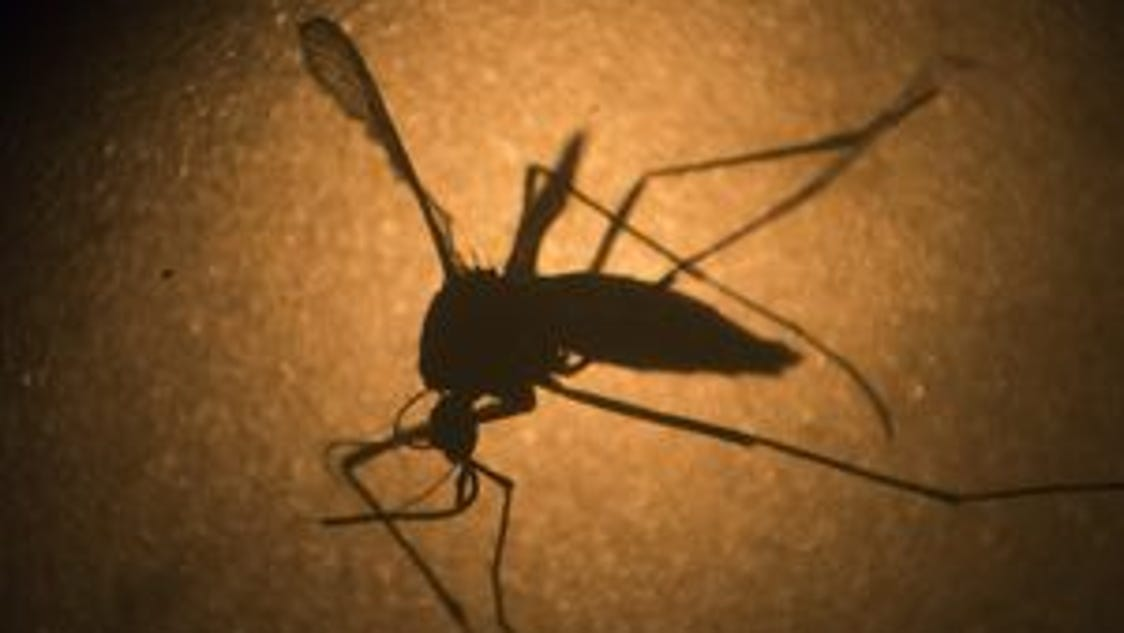 2016's 1st US West Nile case reported in Mississippi