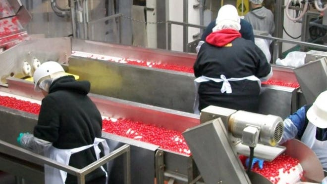 Workers at Oregon Cherry Growers in Salem prepare the company's signature product.