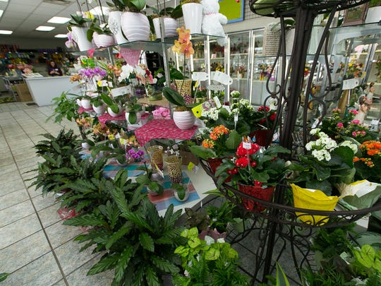 Pictured is the interior of Flowerama on Wednesday where various plant and fresh cut floral arrangements are on display.