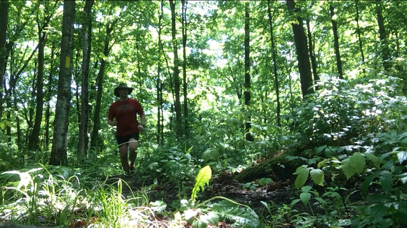 I'm running through the jungle of northeast Marathon County, on the Plover River segment of the Ice Age Trail.