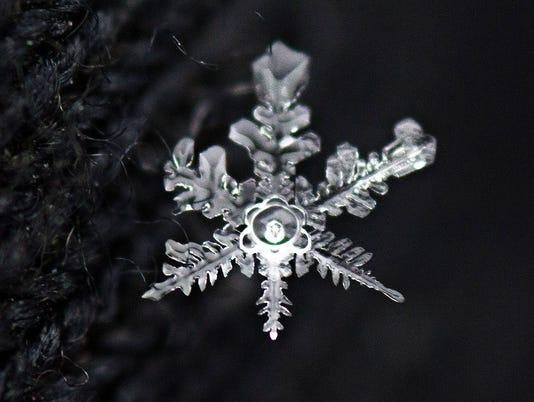 636244035224995868-27-kcfe-snowflakes-4-al-3378179-ver1..jpg