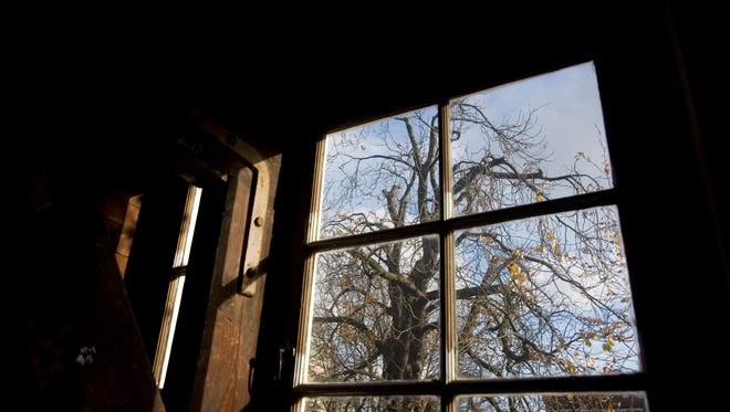 A view of the chestnut tree which Anne Frank said comforted her while she hid from the Nazis during World War II, as seen from the attic window in the secret annex at the Anne Frank House in Amsterdam in 2007.