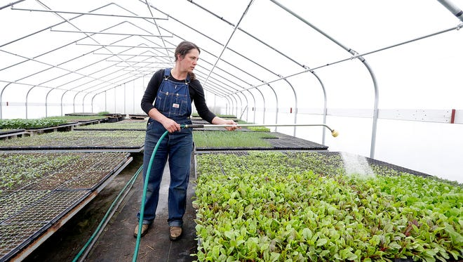 Nicole Schauer waters plants at Good Earth Farm in the town of Oakfield.