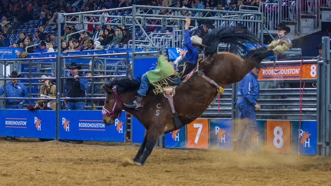 3. Houston Livestock Show and Rodeo