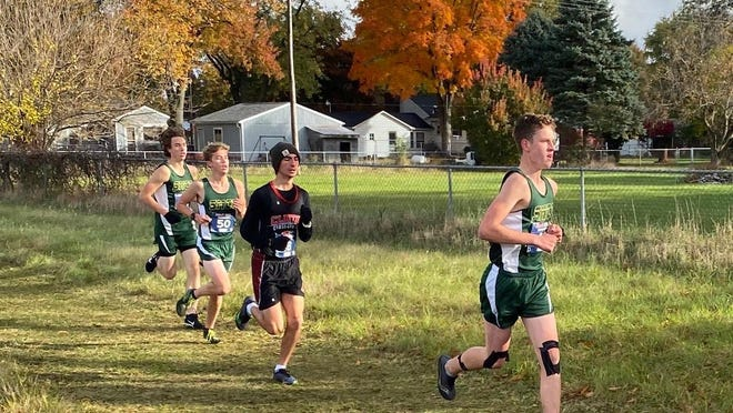 Brody McLaury Jack Palmer and Gabe Iott run for St. Mary Catholic Central in the Pre-Regional at Tecumseh Saturday.