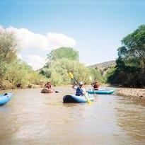 Explore native foods, plants and medicines at the Gila River Festival