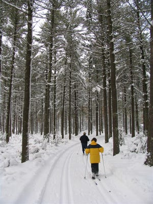 A pair of cross-country skiers travel down the Schmeeckle Reserve and Green Circle Trail in Stevens Point.