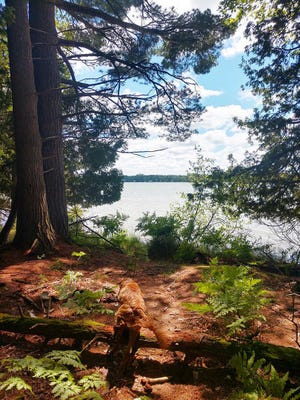 A view of Crooked Lake is seen at the Little Traverse Conservancy's Oden Island Nature Preserve