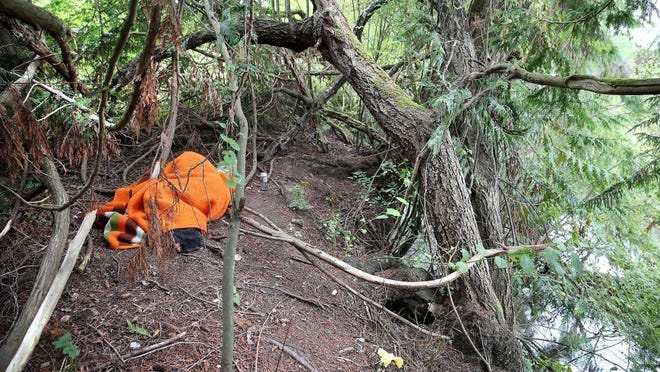 Trail users say homeless people are making camps along the Clear Creek Trail, at times posing potential public health and safety problems. (LARRY STEAGALL / KITSAP SUN)