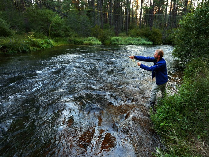 Fly fishing on the metolius river for Millers river fly fishing