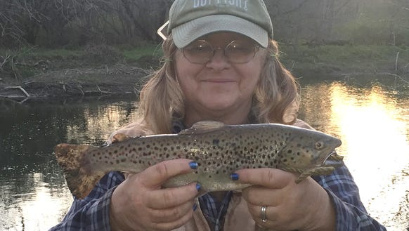 Carol caught this dandy brown trout Wednesday evening