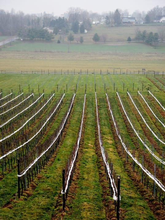 YDR-CD-010816-grandview-winery
