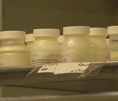 Austin nonprofit needs more breast milk donors