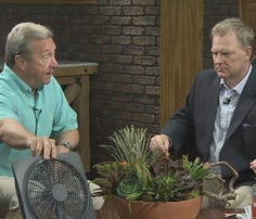Watch Interview: Taking care of pets during hot weather
