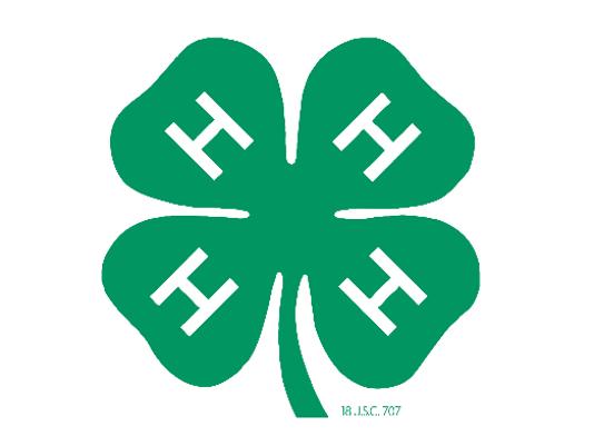 4H clover