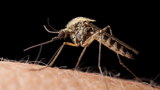 Health Department officials will be spraying the West Nile virus-positive area in Jefferson Township to discourage transmittal of the mosquito-borne illness to residents.