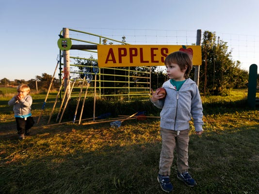 635793975639123032-1002-Apple-Orchard-01