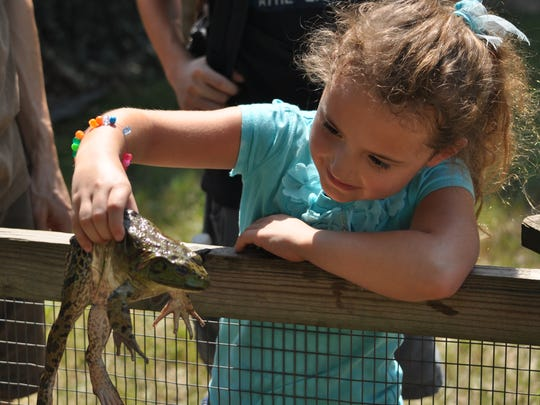 Lauren Girouard holds a frog Saturday at the Louisiana Department of Wildlife and Fisheries' Froggin' booth during Central Louisiana's National Hunting and Fishing Day event in Woodworth.